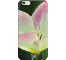 Pink and yellow tulip iPhone Case/Skin