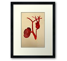 cardio vascular system i  Framed Print
