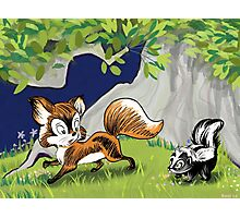 Spunky Little Skunk Photographic Print