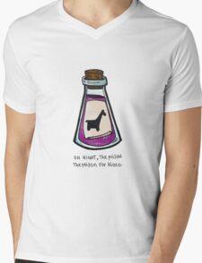 The Poison for Kuzco Mens V-Neck T-Shirt