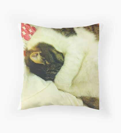 Grumpy Sleepy Cat Throw Pillow