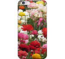 Ranunculus garden  iPhone Case/Skin