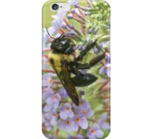 Dusted with Pollen iPhone Case/Skin