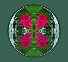 Flower Globe by Robert Gipson