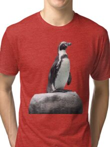 Penguin on a Rock Tri-blend T-Shirt