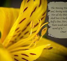 Yellow Flower Macro with Poem by Omar Khayyam by Christopher Cosgrove