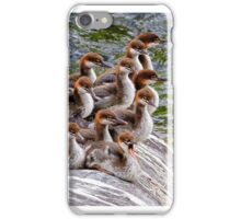 10 Little Mergansers on a Rock iPhone Case/Skin