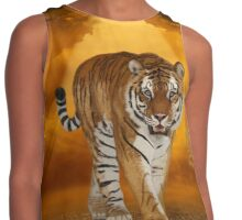 Tiger - After the Storm Contrast Tank