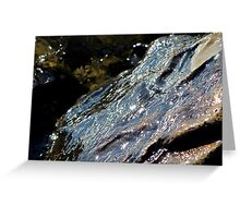 Wave Receding off of Rocks in Hessel Bay Greeting Card