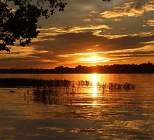 Maumee River Sunset by Bob Hardy