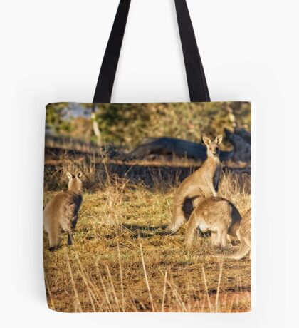 Sunrise at the Pinnacle in Canberra/ACT/Australia Tote Bag