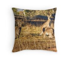 Sunrise at the Pinnacle in Canberra/ACT/Australia Throw Pillow