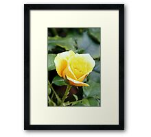...love me also in silence with thy soul. Framed Print