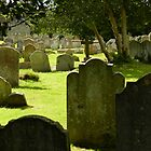 Arundel Stones, England by hans p olsen