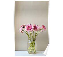 Pink gerberas in glass jar Poster