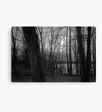 Reservoir Trees Canvas Print