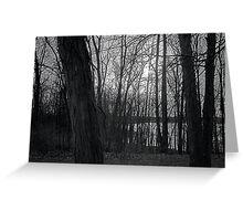 Reservoir Trees Greeting Card