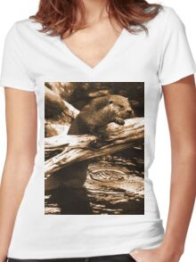 Curious otter Women's Fitted V-Neck T-Shirt