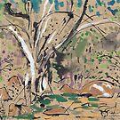 Millstream Pond by John Douglas
