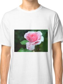 Pink rose on green background. Classic T-Shirt