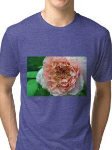 Close up on light pale pink rose petals. Tri-blend T-Shirt