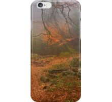 Path of Gold iPhone Case/Skin