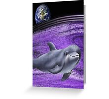 the dolphin Greeting Card