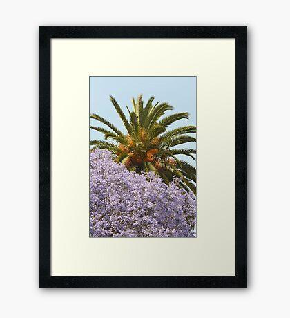 California Spring/Summer Day Framed Print