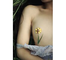 Bouton d'Or Photographic Print