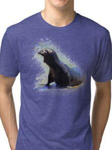Grumpy Seal Tri-blend T-Shirt