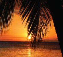 Paradise Found Tropical Palm Tree Orange Silhouette Graphic Print Sticker