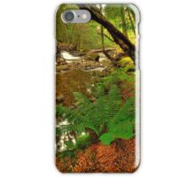 Hugel River valley iPhone Case/Skin