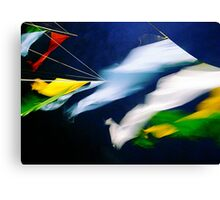 Flying Colours Canvas Print
