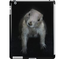 The Only Way is Up iPad Case/Skin