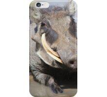 Warthog - African Wildlife Background - Summer Swim iPhone Case/Skin