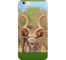 Kudu - African Wildlife Background - Spiral Beauty iPhone Case/Skin