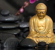 Buddha by artsandsoul