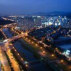 Tancheon River After Dark by Valerie Rosen