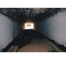 sewer rats Photographic Print