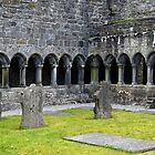 Remains of abbey of Sligo by Arie Koene