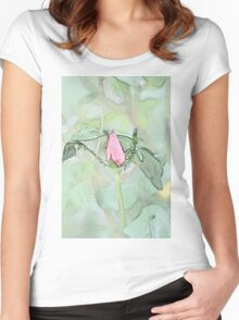 Red garden rose bud on a lush green background  Women's Fitted Scoop T-Shirt