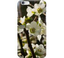 19 iPhone Case/Skin
