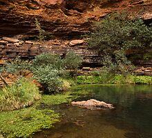 Dales Gorge Karijini National Park by Austin Dean
