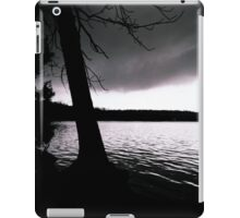 Heaven & Earth iPad Case/Skin