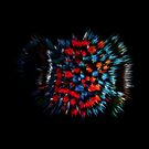 FERROFLUID_0191-02 by PASLIER Morgan