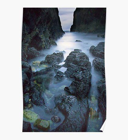 Seal Rocks Poster