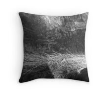 Texture water and grass Throw Pillow