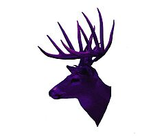 Purple Stag by lyndseyart