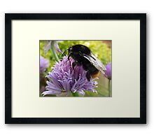 Treat With Respect Framed Print