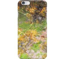 Beach light trail 3 iPhone Case/Skin